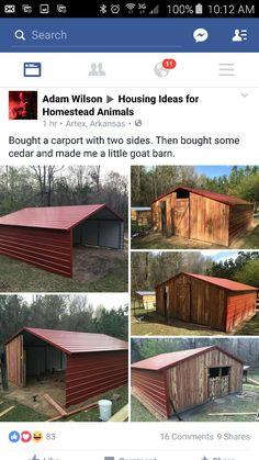 Horse Barn Plans, Horse Barns, Horses, Goat Shelter, Horse Shelter, Raising Farm Animals, Goat House, Small Barns, Goat Barn