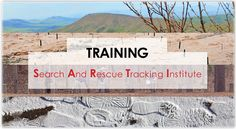 Training with SARTI
