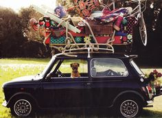 It's a dog's life! (taken from Boden's A/W 2011 catalogue)