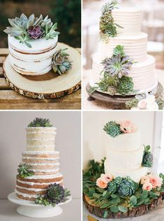 Are you looking for a way to give your wedding flowers or decor a modern twist? Check out our fave succulent wedding ideas for bouquets, cakes and favours. Succulent Wedding Cakes, Succulent Centerpieces, Succulent Cakes, Succulent Tattoo, Crassula Succulent, Cupcakes Lindos, Cactus Cake, Cake Trends, Wedding Decorations