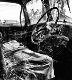 Objects in Shepparton, Australia (old truck spider webs) - a photo by mark09