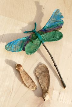 Dragonflies using maple seeds and twigs.
