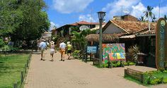 Projeto Tamar, Praia do Forte, Salvador, Bahia, Brasil.