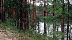 Kookkaimpien harjujen laet kohoavat 70-80 metriä ympäristöään korkeammalle. Erityisesti vesistöalueen poikki kulkevat harjut ovat maiseman kannalta merkittäviä. (Video 12 min.)