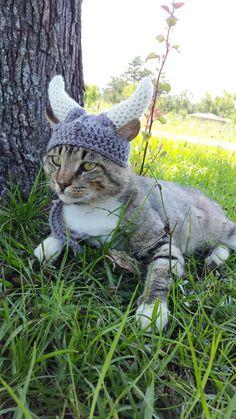A Crocheted Helmet For Your Feline Viking Friend #kot #koty 3cats #cat