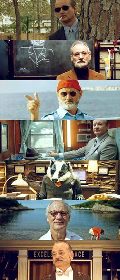 Bill Murray - Wes Anderson movies