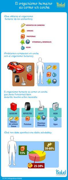 Infografía: el organismo humano es como un coche