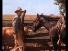 A szél ellenében 5 Horses, Film, Movie, Film Stock, Cinema, Horse, Films