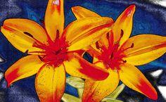 Schets van lelies, rood,geel en blauw