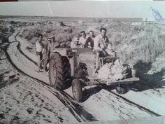 Durante el mes de Agosto solíamos tener algún día libre que aprovechabamos para ir a la playa de la Matalascañas, donde los pileños arrendaban unas chozas entre Torre Carbonero y torre la Higuera. Teníamos que pasar las dunas andando y los afortunados en tractor.