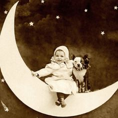 Vintage dog photography - in pictures