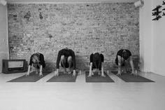 Vores skønne yogalærere er klar til at guide de lækreste yogaklasse i weekenden: Flow, Blidt, Yin, Restorativ & Hatha - vi glæder os til at se jer! #yoga #weekend #yogaweekend #flow #vinyasa #yin #yinyoga  #hathayoga #hatha #restorative #restorativeyoga #yogapose #asana #krop #sundhed #balance #styrke #strenght #smidighed #flexibility #yogastudio #photooftheday #follow #ro #peace #hélt