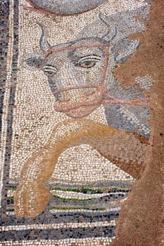 Mosaic of a bull found in the ruins at Dion in Northern Greece.