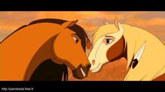 Screencap Gallery for Spirit: Stallion of the Cimarron Bluray, Dreamworks). The mustang stallion Spirit grows up to proudly succeed his father as leader of the Cimarron herd in the unspoiled Wild West. Spirit And Rain, Spirit The Horse, Spirit Animal, Dreamworks Animation, Disney And Dreamworks, Animation Movies, Caballo Spirit, Spirit Drawing, Horse Movies