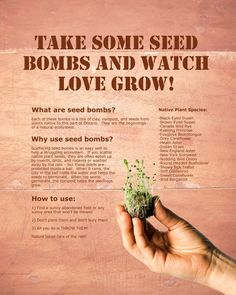 Wedding Guest Favours: Seed Bombs. We made the seed bombs and designed the sign ourselves. :) DIY fun!