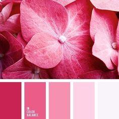Сочетание цвета | 76 фотографий