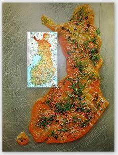 Graavilohi. Домашняя засолка лосося (рецепт из Финляндии)