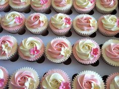 piped-rose-cupcakes-in-pink-and-cream