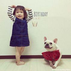 3歳の誕生日❤️ #frenchbulldog #frenchie #dog #daughter #babygirl  #フレンチブルドッグ #女の子