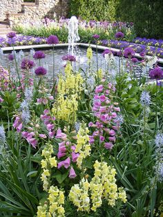A beautiful color palette with snapdragons, foxglove and purple agapanthus.