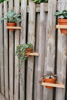 Indoor Plant Hangers, Wall Plant Hanger, Macrame Plant Hangers, Indoor Planters, Plant Wall, Hanging Plants, Garden Veranda Ideas, Outdoor Metal Wall Art, Garden Design Plans