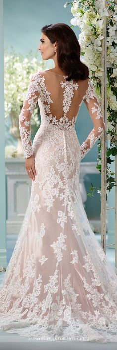 David Tutera for Mon Cheri Fall 2016 Collection - Style No. 216239 Maisie - long sleeve lace wedding dress with illusion sleeves and back