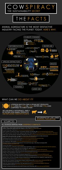 Cowspiracy Infographic: Reasons to avoid animal products from a purely environmental point of view