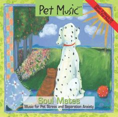 Pet Music: Soul Mates.  Music for Pet stress and separati... https://www.amazon.com/dp/B000K0YOBQ/ref=cm_sw_r_pi_dp_x_n5sZzbM023KF5