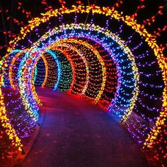 Galaxy prom theme pinned by besott swim prom themes - Green bay botanical gardens christmas lights ...