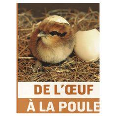 VOCABULAIRE AUTOUR DE LA FERME French Resources, Animals, Milan, French Language, Amazon Fr, Album, Education, Baby Chicks, Farm Animals