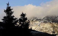 La declaración de Parque Nacional de la Sierra de las Nieves supondrá un revulsivo socioeconómico para los municipios de la zona periférica de protección Sierra, Mount Rainier, Firs, Mountains, Nature, Trees, National Parks, Snow, Naturaleza