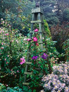 Wooden obelisks suit almost any garden design. Use them draped with clematis or other flowering climbers to add height to a border, as a feature to flank an entrance or to create a focal point at the end of a walkway.