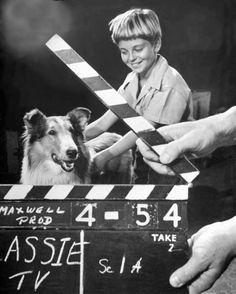 Lassie + Timmy