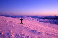 Saariselkä Ski.  Cabins and activities in Saariselkä http://www.saariselka.com