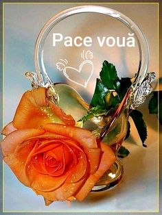 Morning Images, Good Morning Quotes, Disney Kiss, Paris Images, Beautiful Rose Flowers, Heart Images, Smiley, Red Roses, Logo Design