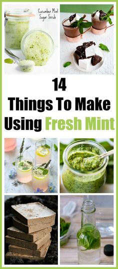 14 Things To Make Using Fresh Mint - Mint is one of the easiest plants to grow! Today I'm sharing 14 creative ways to use fresh mint. How to store fresh mint what to do with fresh mint mint leaves mint recipes benefits of mint herbs mint beauty recipes Mint Leaves Recipe, Fresh Mint Leaves, Fresh Mint Tea, Benefits Of Mint Leaves, Uses For Mint Leaves, Mint Benefits, Herb Recipes, Cooking Recipes, Healthy Recipes