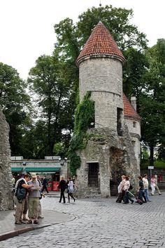 Porta de #Viru | #Tallinn fica golfo da Finlândia, no Báltico e é a capital da #Estónia. A zona medieval é um lugar muito apreciado, pelo ambiente de época ali recriado