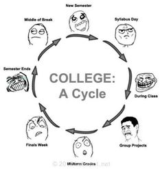 hahahaha college cycle    #student #study #love #books #assignments #University #school #help #us #ca #program #plagiarism