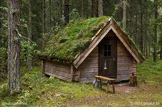 greenroof-log-cabin.jpg (615×410)