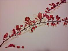 Watercolour - Dřišťál