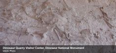 Dinosaur National Monument | National Parks Conservation Association