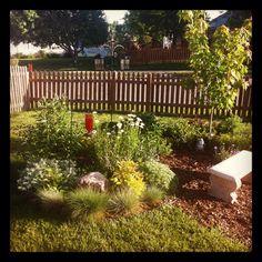 Donna's Memorial Garden