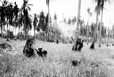 Soldiers of the Australian forces advance through a coconut grove and kunai grass in Japanese occupied New Guinea during World War II. The smoke is from mortar fire during the fierce fighting in the final assault which took Buna, the Japanese stronghold Interesting History, South Pacific, Vietnam War, Military History, World History, World War Two, Historical Photos, Coconut Grove, American History