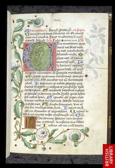 Illuminated initial 'C'(um invocarem) at the beginning of Psalm 3 (4), with a partial border of branches, leaves, and daisies.   Origin:Germany, S. (Worms?)