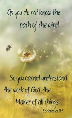 "** Ecclesiastes 11:5 - ""As you do not know the path of the wind... so you cannot understand the work of God, the Maker of all things."" **"