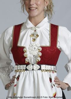 Bilderesultat for vestagder bunad Folk Costume, Costumes, Norwegian Clothing, Medieval Dress, Ethnic Fashion, Historical Clothing, Traditional Dresses, Norway, How To Wear