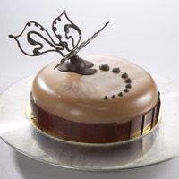 pastry championship entremets cakes