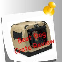 Dog Crate Reviews