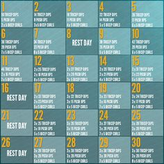 30 Day Arm Challenge | Take The Challenge Now!