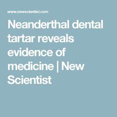 Neanderthal dental tartar reveals evidence of medicine | New Scientist